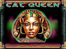 Cat Queen от Playtech – онлайн-игра гарантирующая приятный досуг